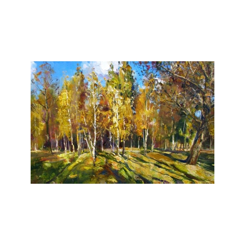 Post card the birchwood under the sun beams by vasil peshkun The birchwood
