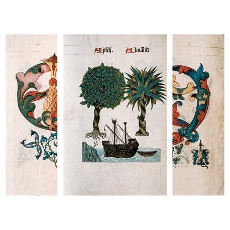 Коллекция:Книга эскизов эпохи Тюдоров, 1504 г.