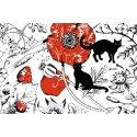 Cats and Poppies