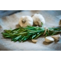 Fresh rosemary and fresh garlic