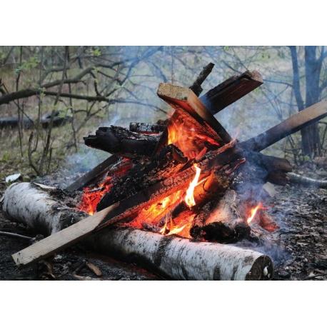 Forest warmer