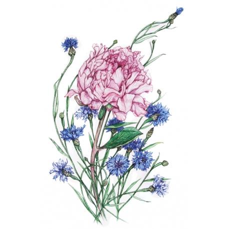 Сornflowers and Peony