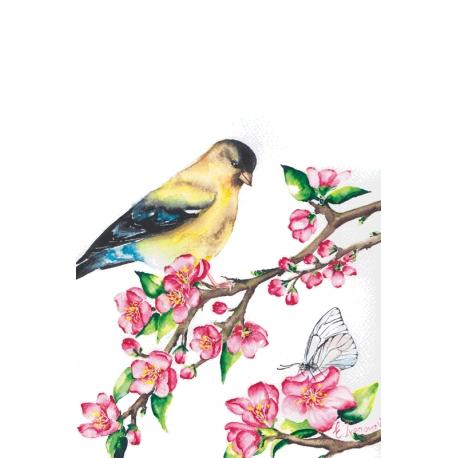 Весна канарейки