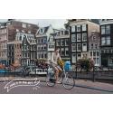 Амстердамно…