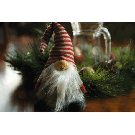 Magic under Christmas