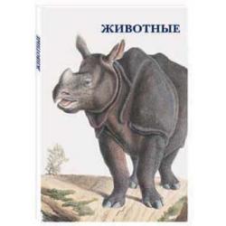 Животные - набор из 15-ти почтовых открыток