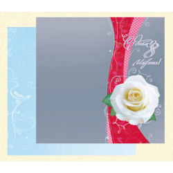 Happy March 8! White rose on decorative gray background