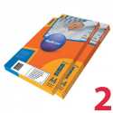 Removable labels MULTILABEL, 210х148 mm, 2 pcs on A4 paper, 100 pcs/pack