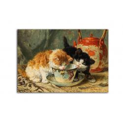 коллекционные открытки - художник Henriette Ronner-Knip