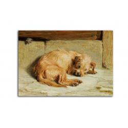 коллекционные открытки - художник Briton Riviere