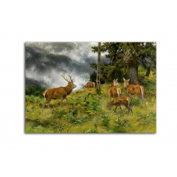 коллекционные открытки - художник Josef Schmitzberger