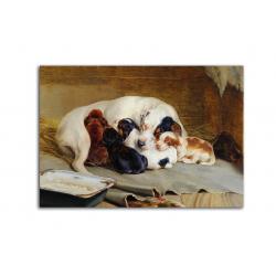 коллекционные открытки - художник William Trood
