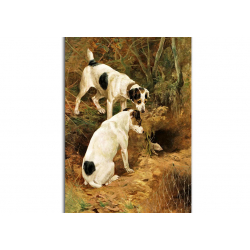 коллекционные открытки - художник Arthur Wardle