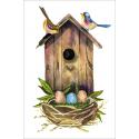 Birdhouse and birds