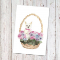 Chihuahua Mila (mini postcard)