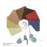 """Плитки для зентангла и зенарта, серия """"ЭКО"""" , комплект из 10 видов добавок измельчённых растений"""