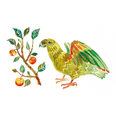 Попугай и апельсины
