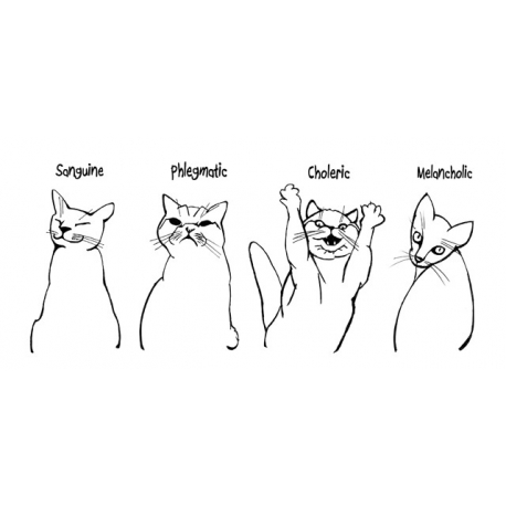 Cat Temperaments