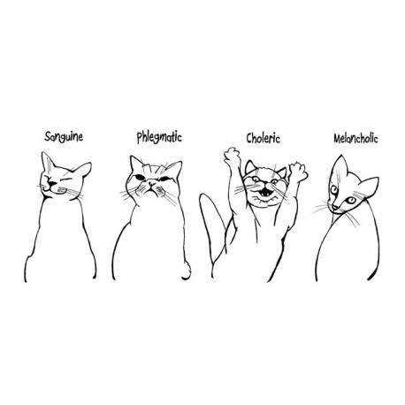 Кошачьи темпераменты