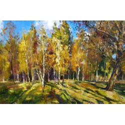 The birchwood under the sun beams