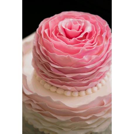 Dessert Rose