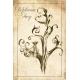 Creatures. Delphinium Fairy