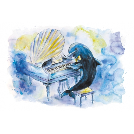The world of dolphins. Pianist Vincent