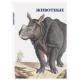 Animals - a set of 15 postcards