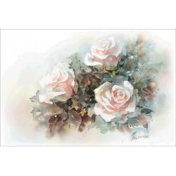 Январские розы
